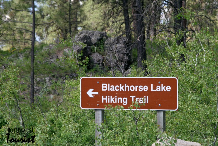 Blackhorse lake hiking trail
