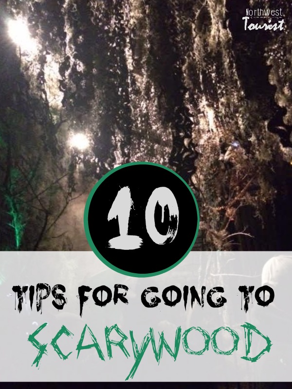 10-tips-for-going-to-scarywood